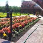 Aiakujundus-garden-